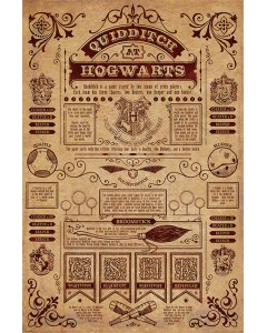 Harry Potter - grand poster Quidditch at Hogwarts V2 (61 x 91,5 cm)