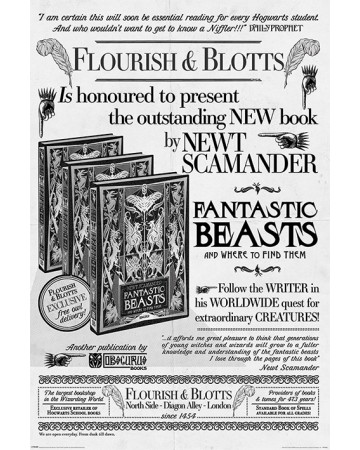 Fantastic Beasts 2 The Crimes of Grindelwald - grand poster Flourish & Blotts (61 x 91,5 cm)