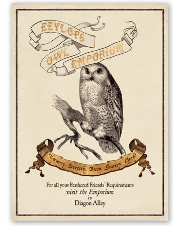 Harry Potter - Poster Eeylops Owl Emporium 50 x 69 cm