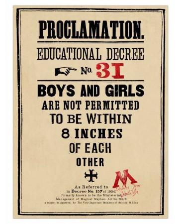 Harry Potter - Poster Proclamation No.31 50 x 69 cm