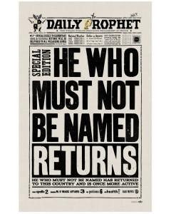 Harry Potter - Serviette torchon Voldemort