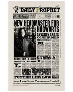 Harry Potter - Serviette torchon Severus Snape