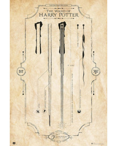 Harry Potter - Grand poster The Wand (61 x 91,5 cm)